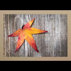 Herbstblatt aus Holzwand