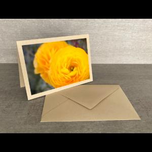 Vorderseite-Gelbe Blumen Menton