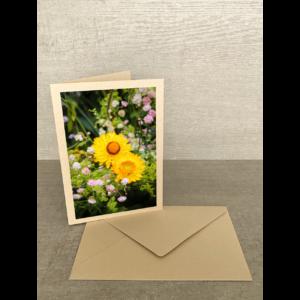 Vorderseite-Strohblumen gelb