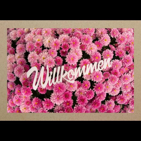 WILLKOMMEN auf Chrysanthemen